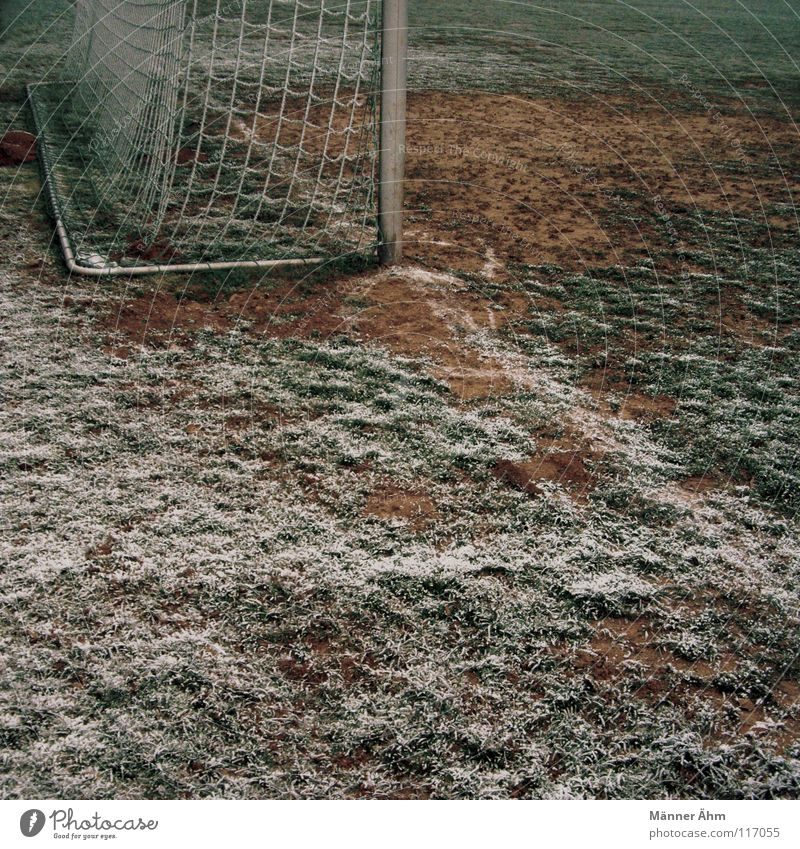 Winter Sports Playing Leisure and hobbies Soccer Ball Lawn Individual TV set Toys Playing field Gate Club Radio (broadcasting) Shorts Fan