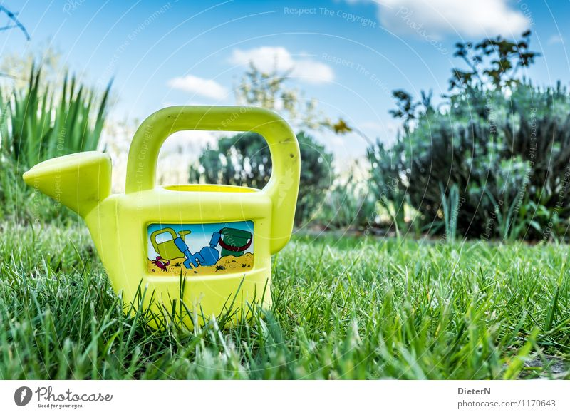 can Sky Plant Flower Grass Bushes Blue Yellow Green Toys Watering can Lawn Garden Colour photo Multicoloured Exterior shot Deserted Copy Space right Day