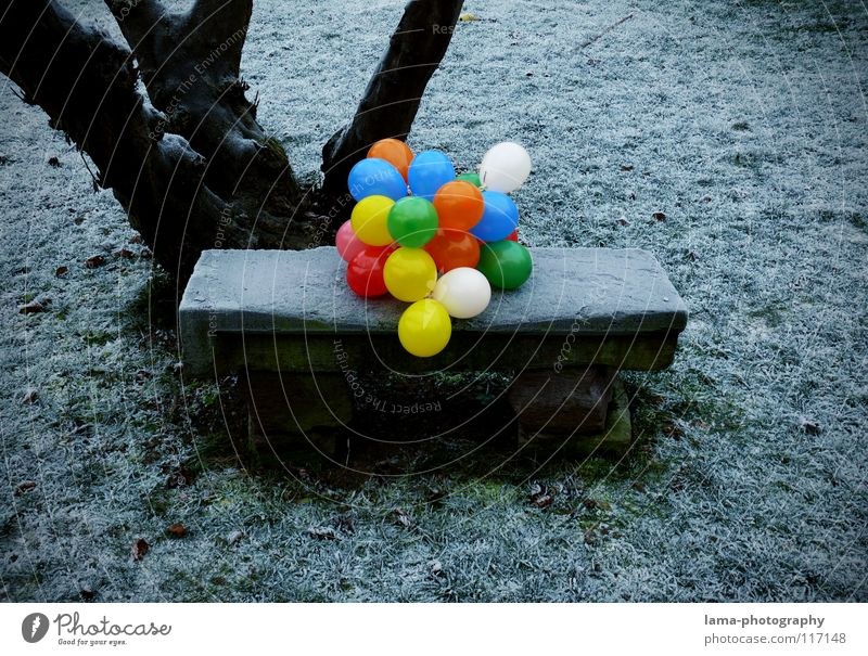 99 - Balloons Multicoloured Gaudy Contrast Physics Cold Ice Winter Park Park bench Seating Meadow Stone bench Tree Fill Loneliness Grief Past Memory Planning
