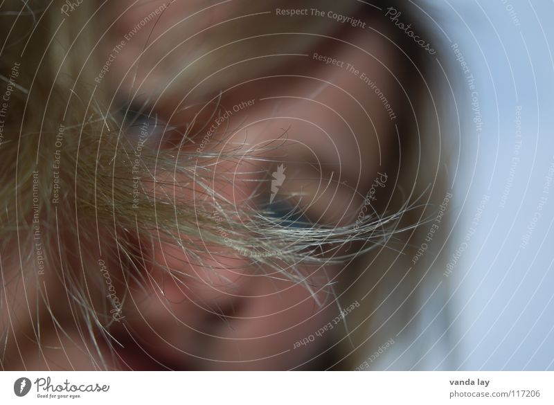 split ends Woman Hair and hairstyles Portrait photograph Blonde Hairdresser Living room Cut Macro (Extreme close-up) Close-up Face Nose Detail eye Bangs