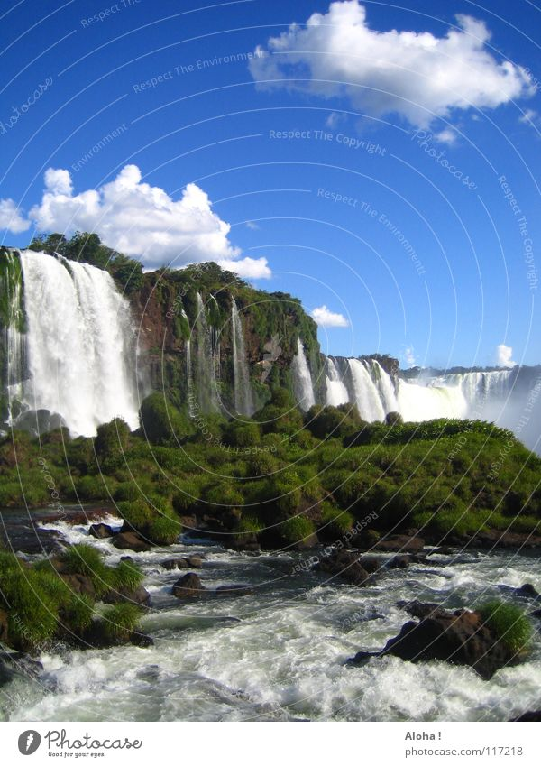 Is anyone going? VI Current Slope Brazil Argentina Art Torrents of water Plant Body of water Tourism Tree Clouds Horizon Drops of water Tourist White crest Fog
