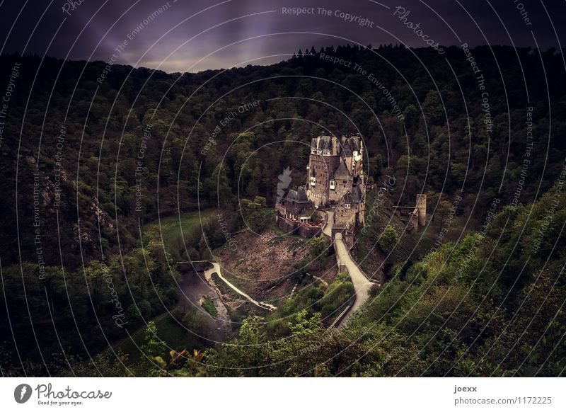 landing approach Forest Castle Manmade structures Tourist Attraction Monument Old Gigantic Large Creepy Historic Tall Rich Retro Brown Green Idyll Colour photo