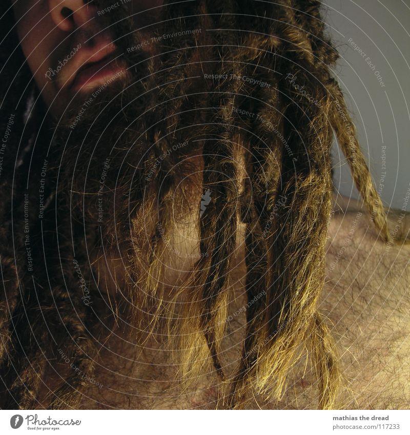 at night Dreadlocks Felt Long Dark Upper body Upper arm Vessel Man Masculine Strong Threat Shoulder Concealed Nerviness Facial hair Beard hair Unshaven