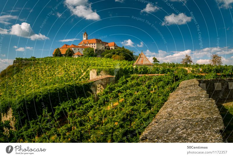 castle riegersburg steiermark Tourism Trip Nature Clouds Summer Beautiful weather Garden Meadow Field Wine growing Federal State of Styria Austria Castle