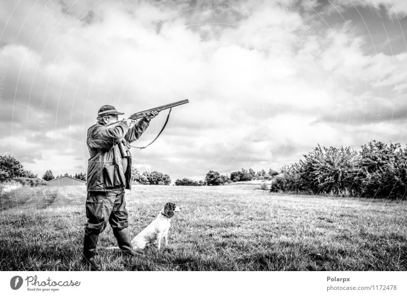 Hunter aiming with rifle Leisure and hobbies Playing Hunting Sports Human being Man Adults Nature Landscape Autumn Meadow Jacket Dog Wild Concentrate Action Aim