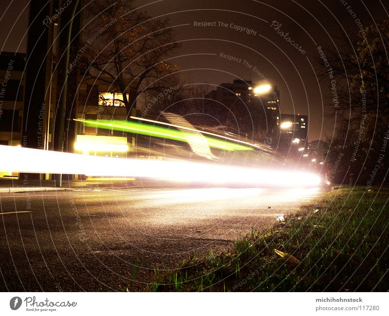 BVG oils oils Long exposure Light Stripe Grass Dark Night Driving Motor vehicle Transport Open Means of transport Visual spectacle Strip of light Lamp