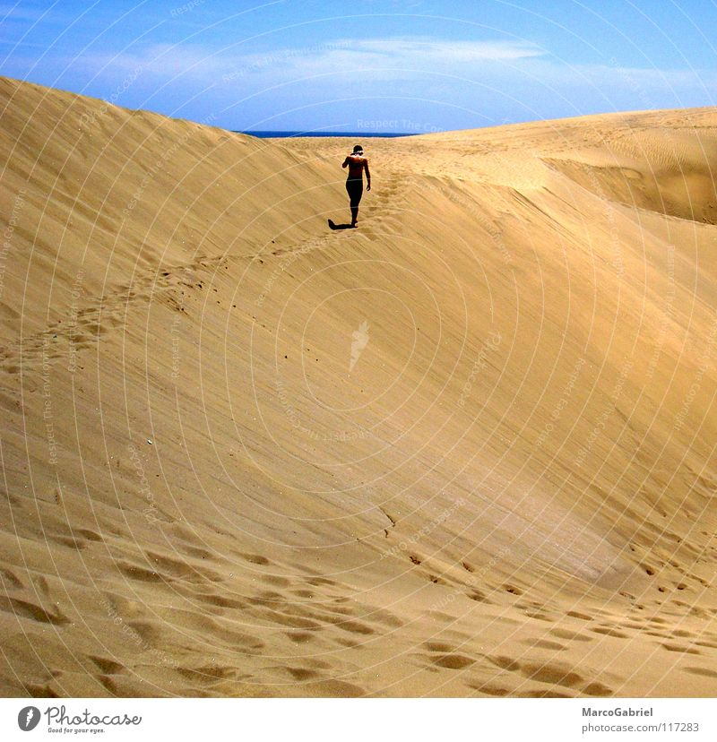 beyond the horizon Footprint Horizon Ocean Vacation & Travel Reach Earth Sand Beach dune Tracks Blue sky not surrender sb./sth. Target