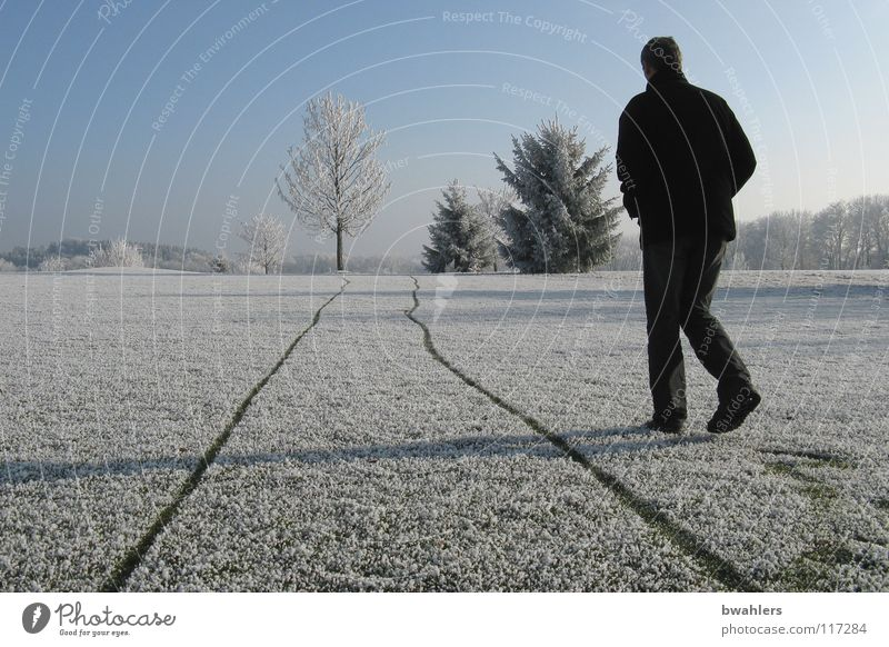 Next to the track Cold Winter Hoar frost Loneliness White Man Beautiful Tree Ravensburg Structures and shapes Snow Ice Tracks Walking Shadow Landscape Sky Frost