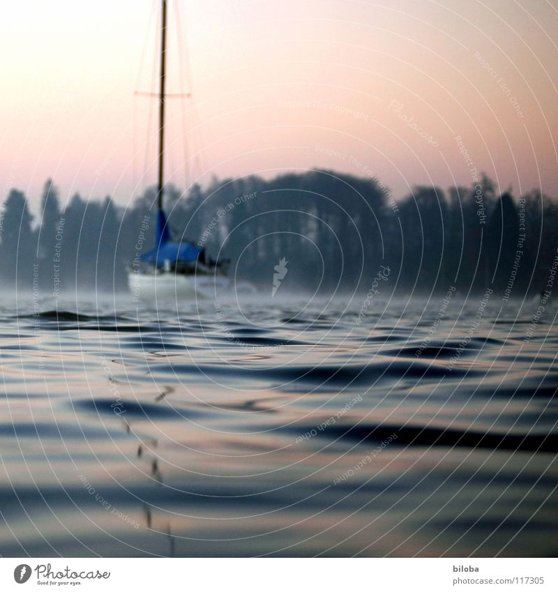 Boat II Watercraft Expensive Weigh Waves Sailboat Liquid Cold Deep Lake Switzerland Forest Fog Moody Untouched Harmonious Winter Calm Glide Body of water