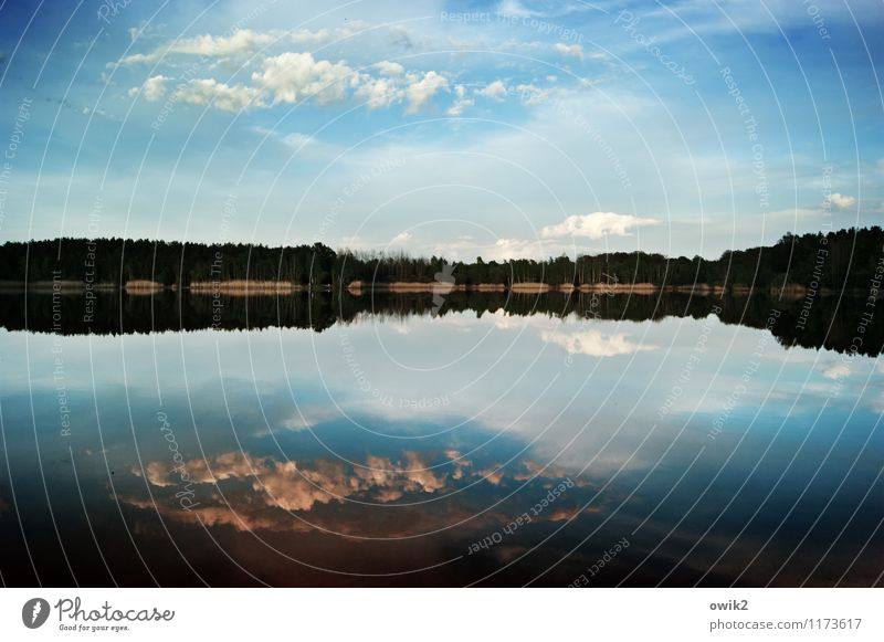 Sky Nature Blue Water Landscape Calm Clouds Far-off places Forest Environment Freedom Lake Germany Horizon Weather Air