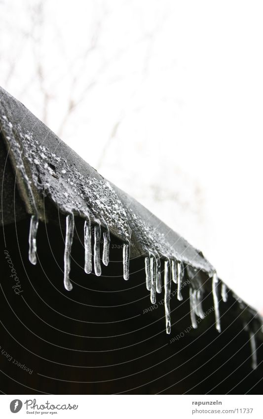 Winter Cold Ice Drops of water Wet Frost Roof Derelict Icicle Gutter