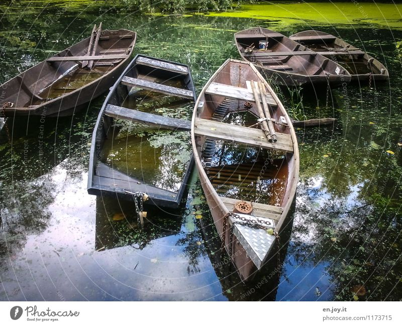 Nature Old Green Summer Water Landscape Calm Environment Sadness Time Dream Idyll Gloomy Trip Beautiful weather Adventure
