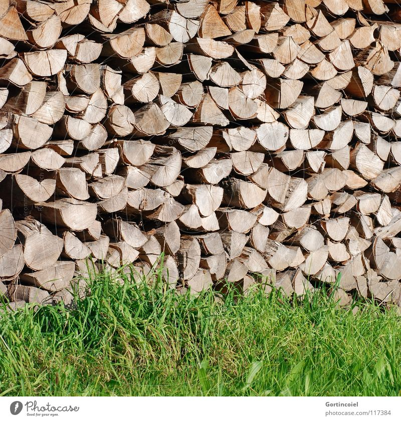 chimney lining Garden Energy industry Warmth Grass Meadow Wood Warm-heartedness Stack of wood Firewood Heat Fuel Colour photo Pattern Structures and shapes