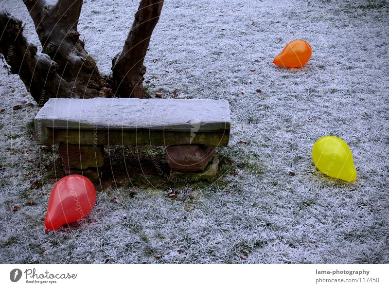 101 - Party already over... Balloon Multicoloured Gaudy Contrast Physics Cold Ice Winter Park Park bench Seating Meadow Stone bench Tree Fill Loneliness Grief
