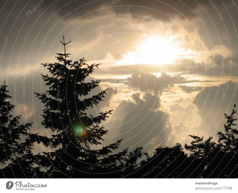 snapshot02 Winter mood Dark clouds Sky Sun cross-fade