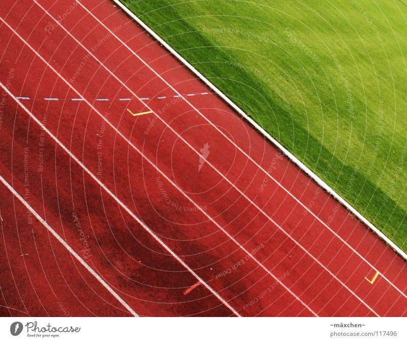 White Green Red Sports Playing Line Power Walking Modern Success Tracks Border Pain Fatigue Racecourse Musculature