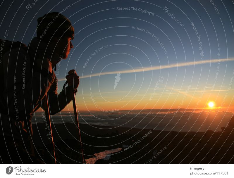 Sky Sun Far-off places Above Mountain Success Sunrise Mountaineering Climbing Tenerife Teide