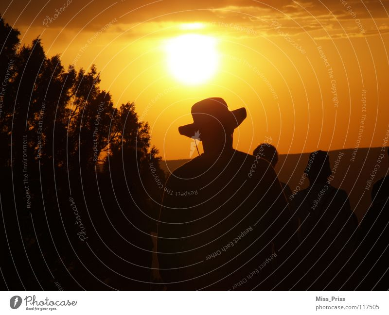 towards the sun Sunset Sunrise Cowboy Grand Canyon Romance Americas USA Shadow Vest Calm Evening Sky Human being