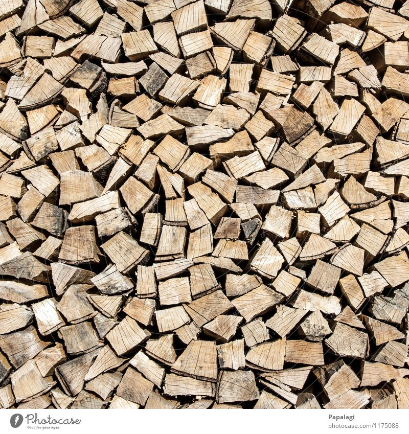 Nature Tree Wood Brown Work and employment Energy Branch Fire Agriculture Tree trunk Dry Material Sharp-edged Burn Stack Pine