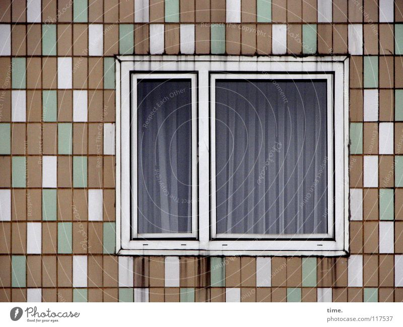 City Green White Loneliness House (Residential Structure) Window Wall (building) Building Wall (barrier) Brown Line Facade Design Arrangement Glass Transience