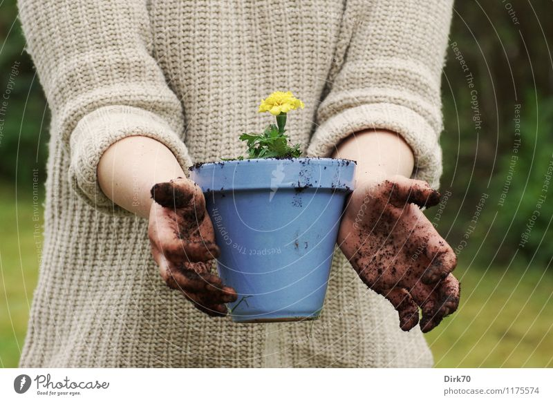 Garden season is open again! Leisure and hobbies Gardening Living or residing Flat (apartment) Human being Feminine Hand 1 30 - 45 years Adults Nature Earth