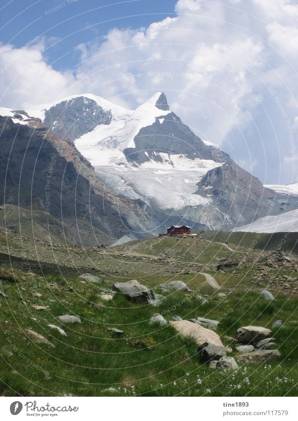 Swiss Alps Large Might Steep Snow Switzerland Europe Hiking Leisure and hobbies Beautiful Gravel Clouds Grass Green Juicy Rich Exterior shot Panorama (View)