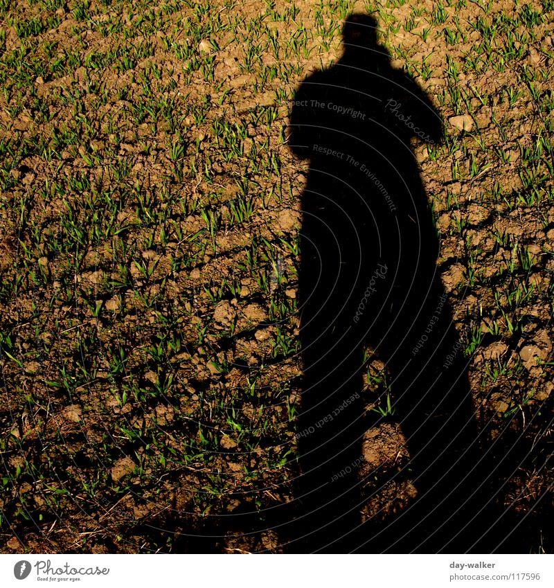 unreal False Field Mirror Progress Pattern Silhouette Cold Autumn Shadow Deception Illusion Colour Nature Exterior shot