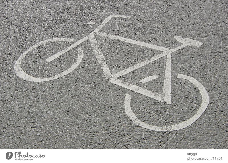 Street Movement Bicycle Driving Cycle path