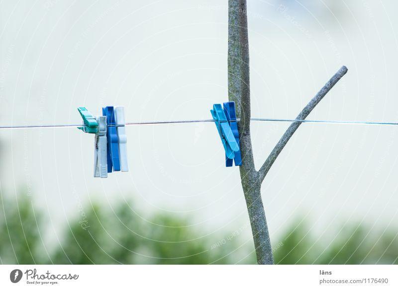 clip Clothesline Clothes peg Sky Cotheshorse Wash Tense Dry