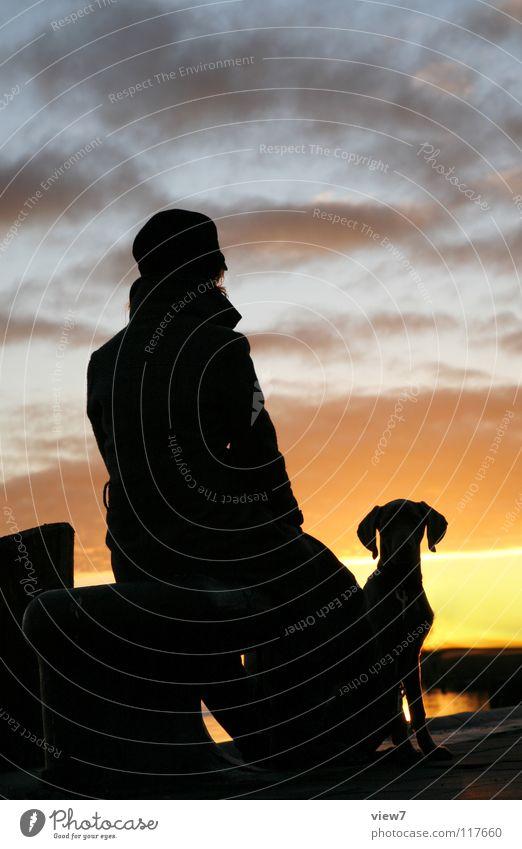 silhouette Silhouette Dog Woman Black Sunset Light Portrait photograph Progress Direction Horizon Contour Romance Vacation & Travel Night Mammal Shadow Sky Head