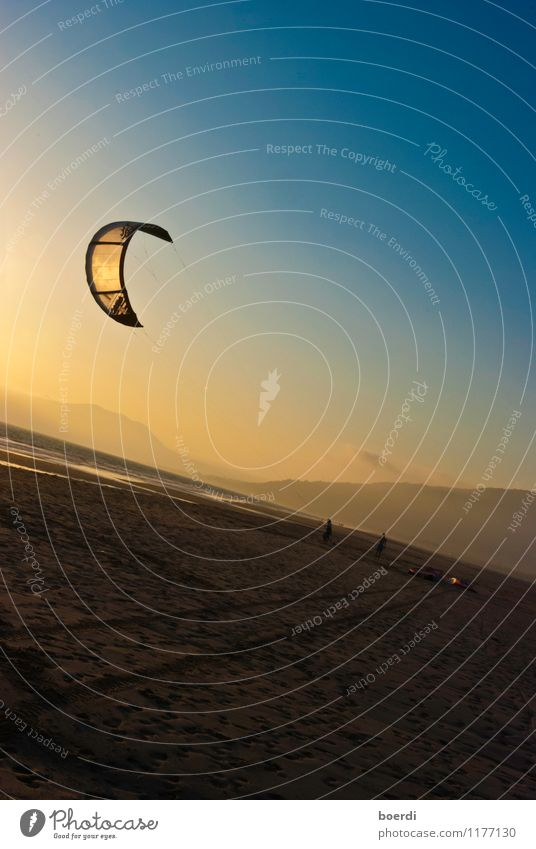 wind misalignment Leisure and hobbies Kiting Vacation & Travel Summer Beach Sports Aquatics Flying Athletic Blue Yellow Freedom Joy Tourism Colour photo