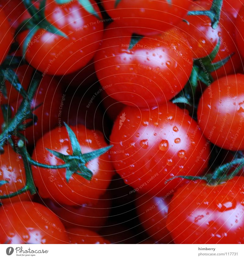 tomato case Kitchen Cooking Ingredients Fresh Agriculture Summer Healthy Plant Vegetable Vegetarian diet Macro (Extreme close-up) Close-up Tomato Nutrition