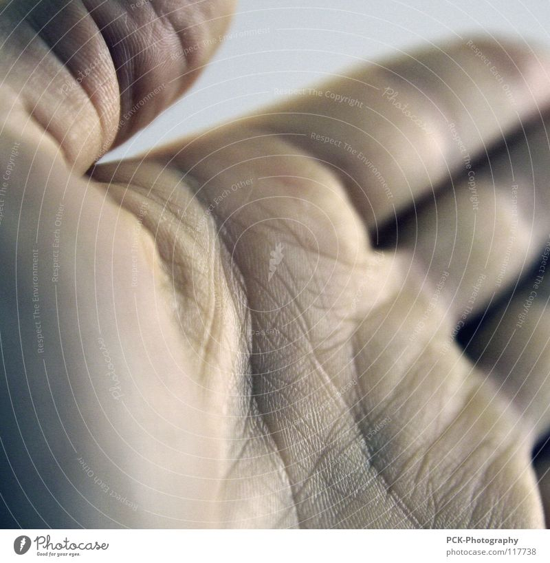 craft Hand Palm of the hand Pore Fingers Thumb Invitation Handshake Trust Furrow Skin Wrinkles Old