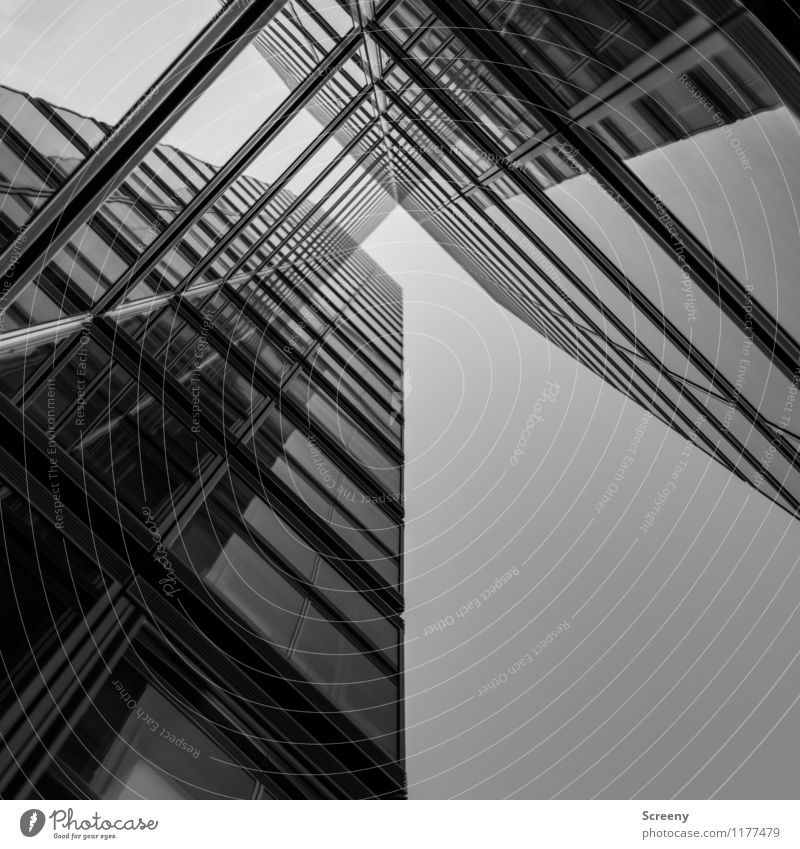 High up #6 Town High-rise Building Architecture Facade Window Glass Metal Tall Growth Black & white photo Exterior shot Deserted Day Reflection