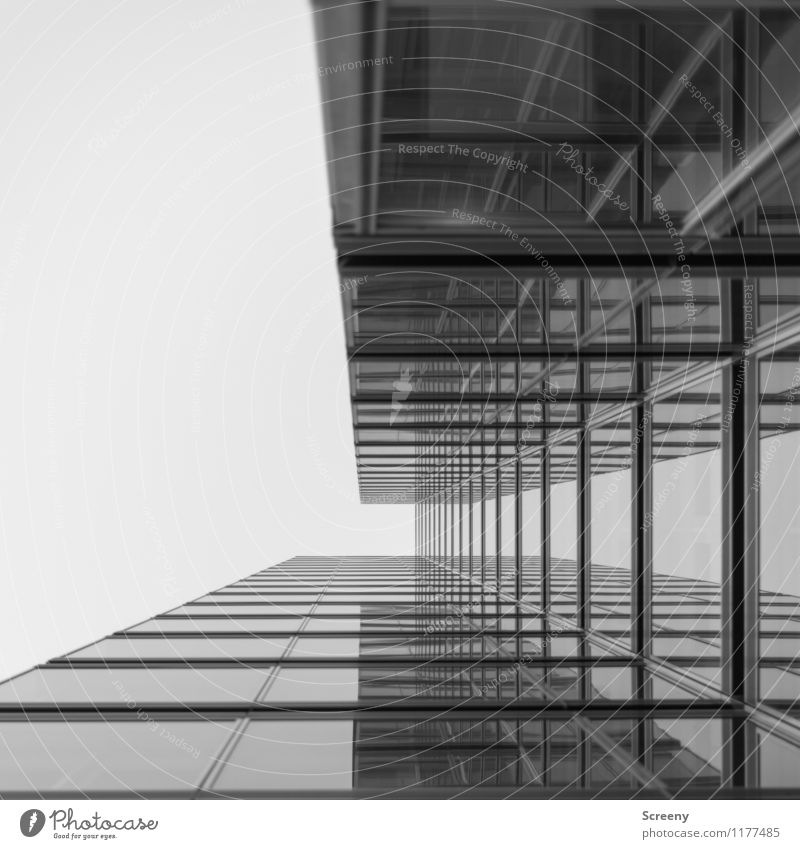High up #5 Town High-rise Building Architecture Facade Window Glass Metal Tall Growth Black & white photo Exterior shot Deserted Day Reflection