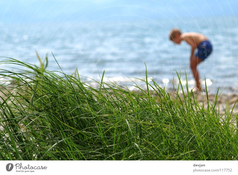 Child Water Green Blue Summer Ocean Vacation & Travel Boy (child) Grass Happy Coast Waves Search Beach dune Concentrate Light heartedness