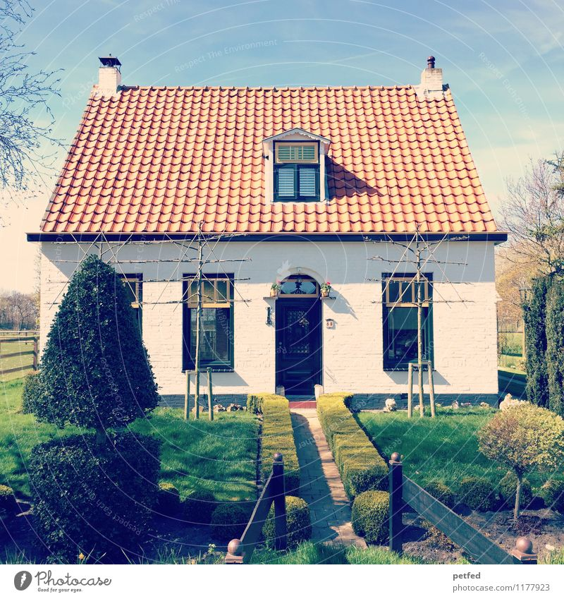 Domestic Views XIV Flat (apartment) House (Residential Structure) Garden Sky Spring Beautiful weather Hedge Lawn Detached house Facade Window Door Roof Small