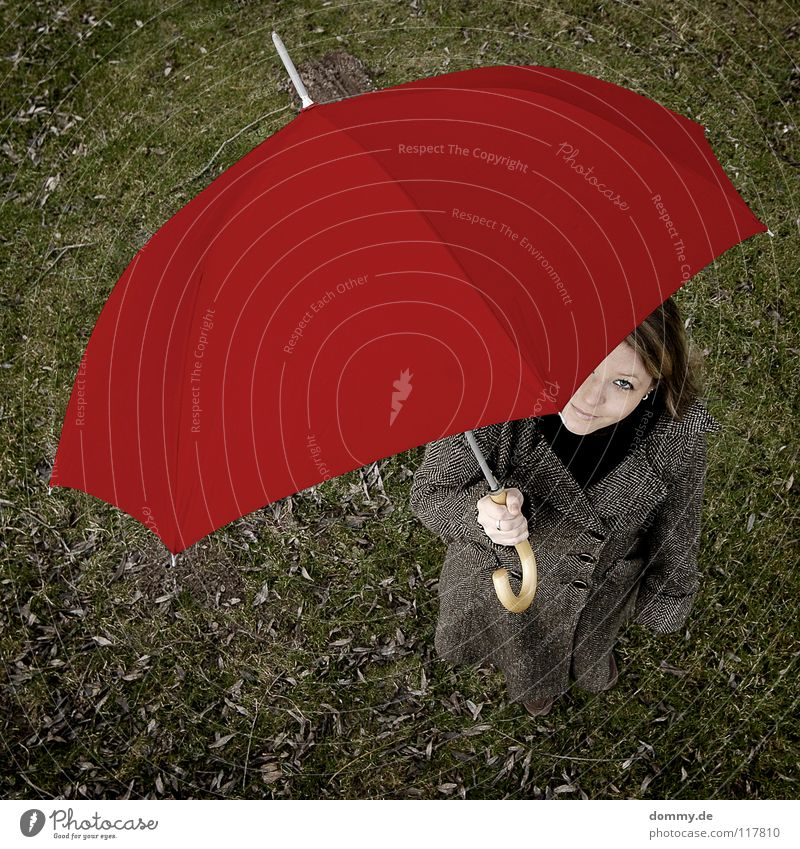 hello alice Red Green Autumn Leaf Dark Wood Woman Coat Blonde Grinning Beautiful Hand Bird's-eye view Square Joy Umbrella rain screen stolen goods Lawn steffi