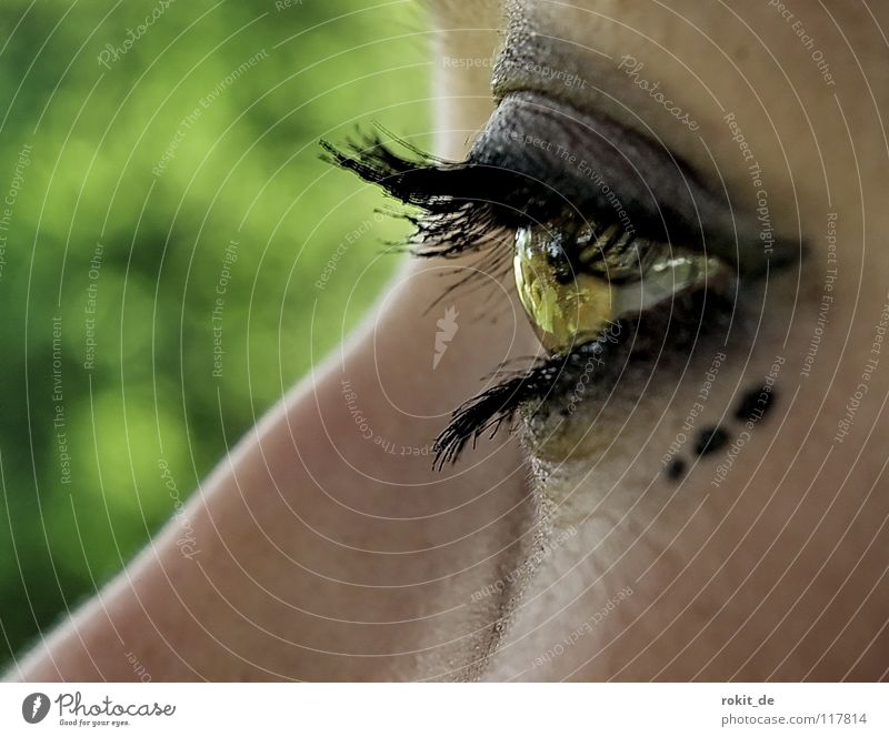 Youth (Young adults) Green Joy Black Eyes Dark Sadness Funny Nose Grief Cosmetics Point Trust Strong Vantage point Make-up