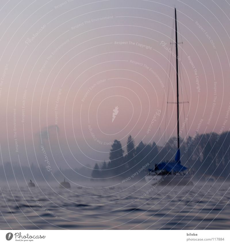 Boat III Watercraft Sailboat Liquid Cold Deep Lake Switzerland Waves Forest Fog Moody Untouched Harmonious Winter Calm Glide Body of water Expensive Weigh