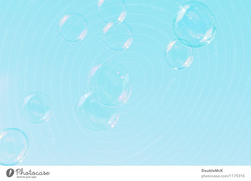 Many soap bubbles float in the cloudless sky Leisure and hobbies Playing Infancy Sky Cloudless sky Soap bubble Water Flying Fluid Round Blue Joy Movement