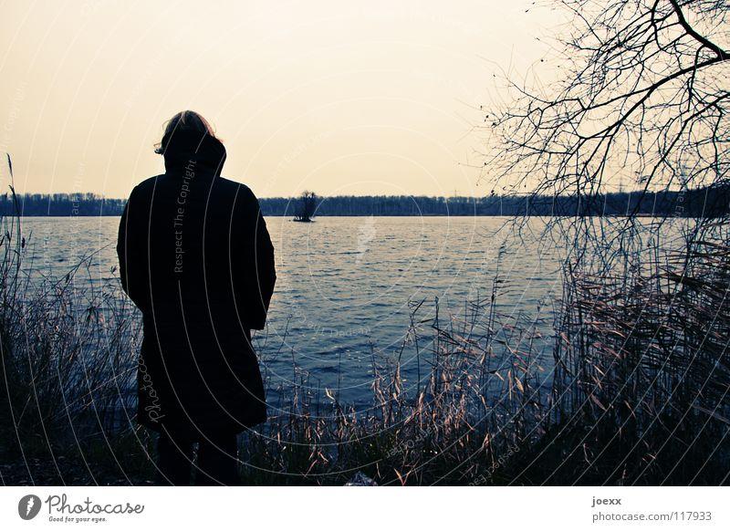 longing Loneliness Woman Freeze Think Autumn Hope Cold Coat Lake Longing Grief Vantage point Winter Distress digress Sky thoughtfulness wistfully Sadness Coast
