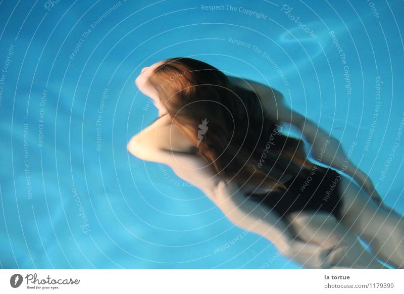 mermaid Elegant Harmonious Swimming & Bathing Dive Human being Feminine Body Hair and hairstyles 1 Bikini Brunette Long-haired Water Esthetic Athletic Natural