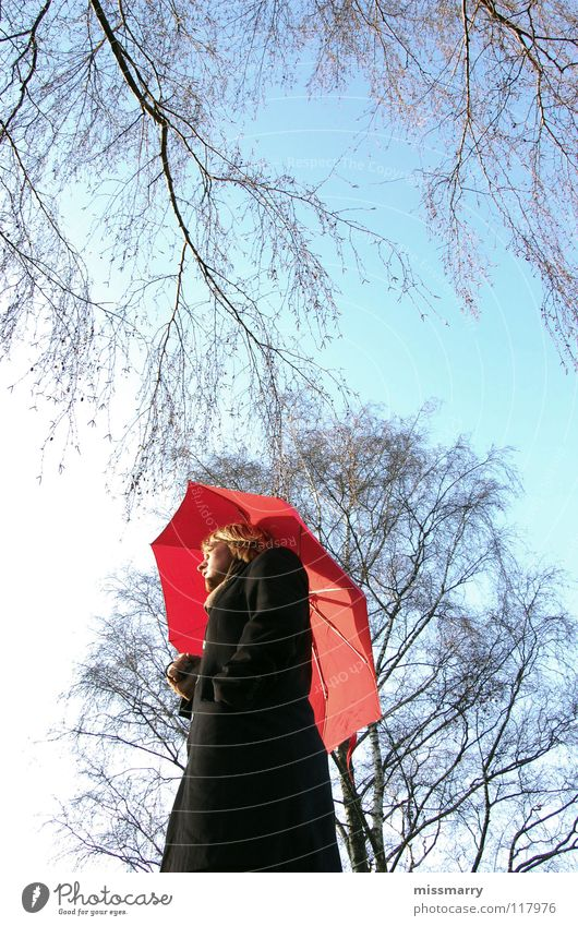 umbrella without rain Umbrella Tree To go for a walk Autumn Winter Red Sunshade Leaf Coat Man Thought Emotions Human being Sky Weather protection