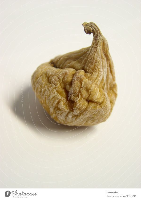 Brown Fear Fruit Wrinkles Panic Beige Dried Ochre Fig Dried fruits