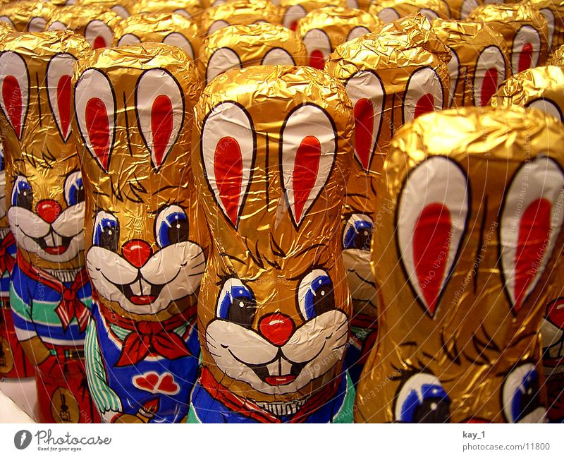 Spring Easter Leisure and hobbies Candy Chocolate Hare & Rabbit & Bunny Easter Bunny
