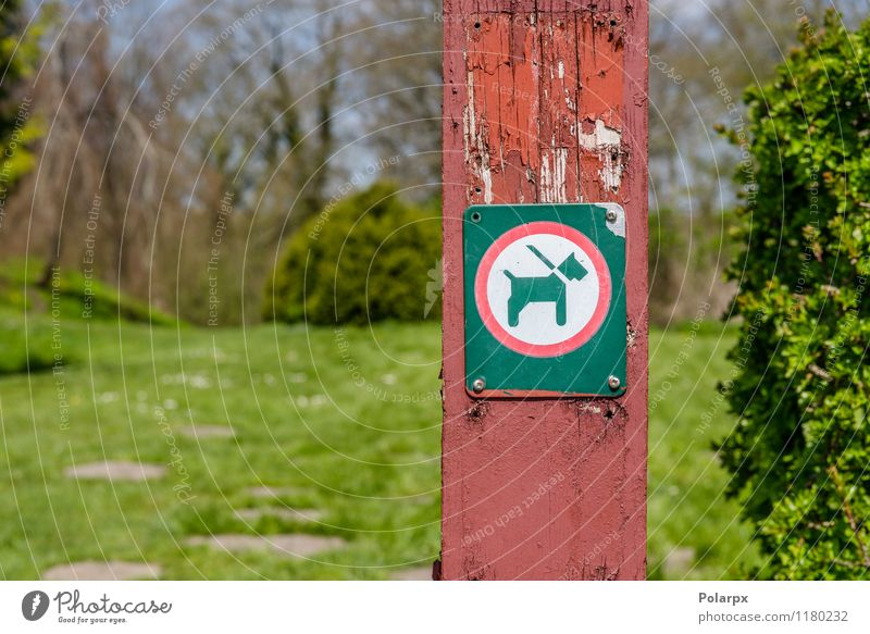 Dog in a leash sign Animal Park Lanes & trails Pet Signage Warning sign Clean Red Black White Safety Caution Pole Leash warning Symbols and metaphors Notice