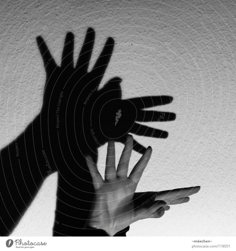 Shadow Bird Hand Fingers Fingernail Nail polish Wall (building) Wallpaper Ingrain wallpaper Light Dark Shadow play Black White Gray Gray scale value