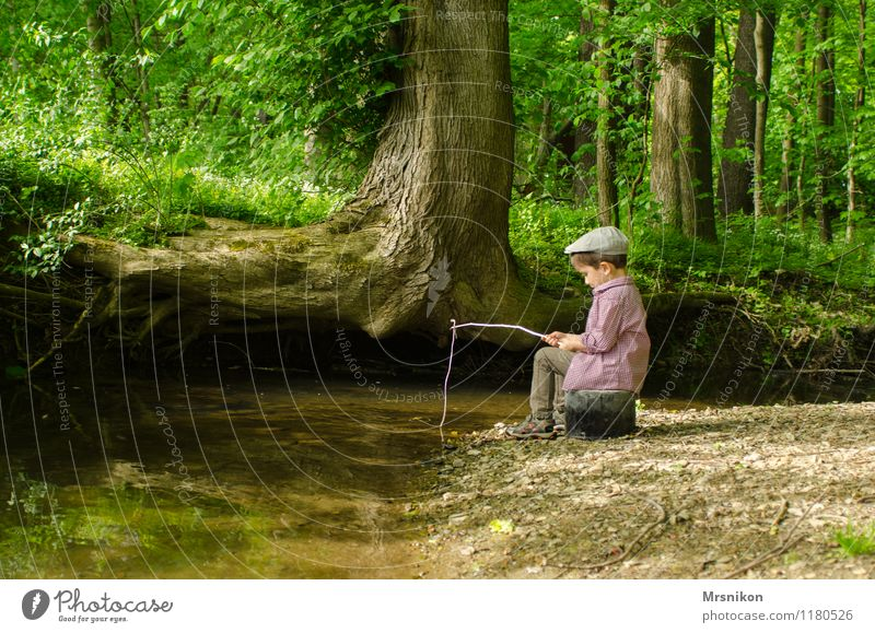Human being Child Nature Tree Loneliness Joy Forest Spring Boy (child) Playing Happy Infancy String Cap River bank Toddler