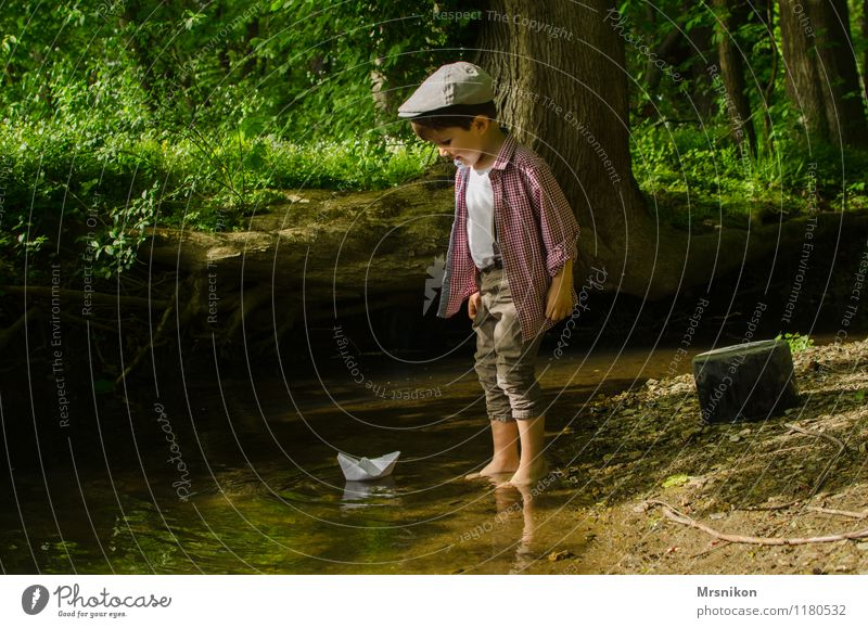 forest brook Human being Toddler Boy (child) Infancy 1 1 - 3 years 3 - 8 years Child Nature Water Spring Beautiful weather Grass Bushes Fern Wild plant Forest